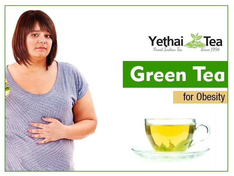 Green Tea Fights Obesity