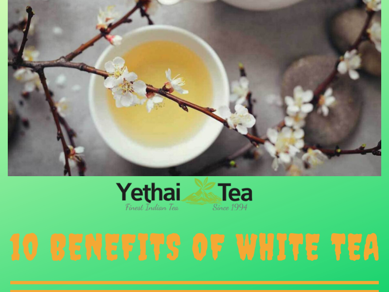 10 Proven Benefits of White Tea which everyone should know about