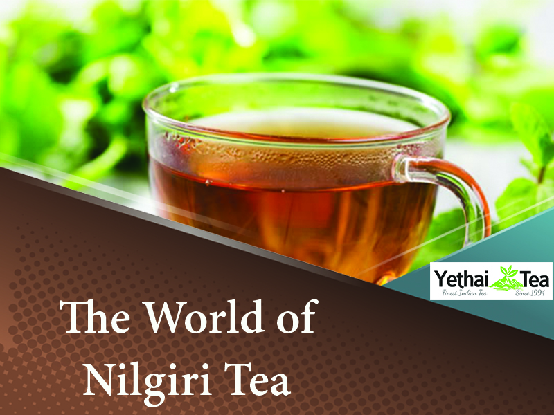 The World of Nilgiri Tea