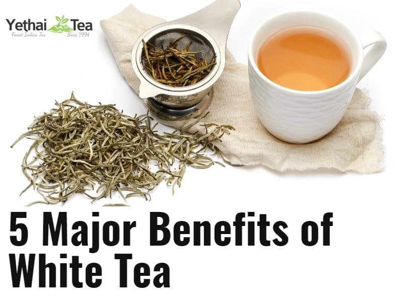 5 Major Benefits of White Tea