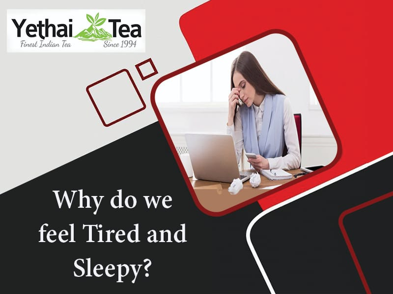 Why do we feel Tired and Sleepy?
