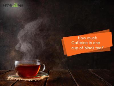 How much Caffeine in one Cup of Black Tea?