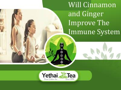 Will Cinnamon and Ginger Improve the Immune System
