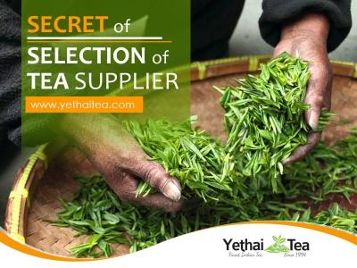 Tips to Choose the Right Tea Supplier